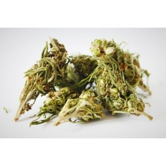 BIO Hemp Tea Leaves and Flowers 35g